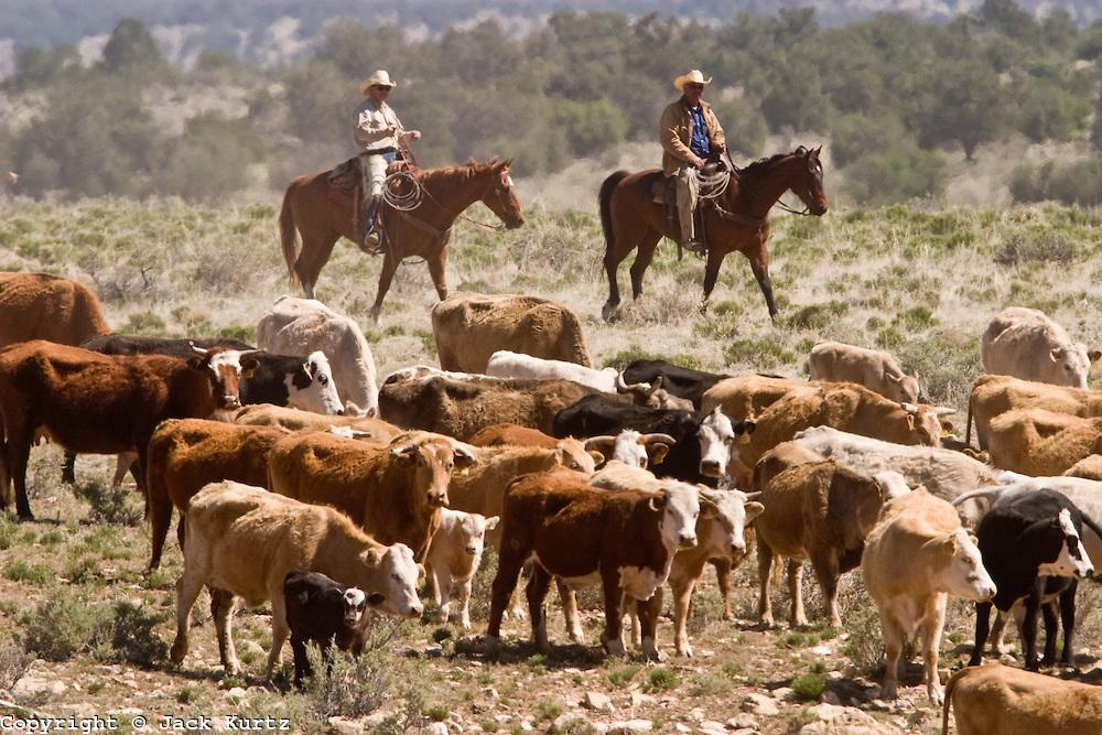 Un ranch in Arizona