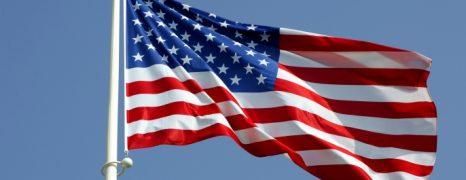 La bandiera del fusionismo
